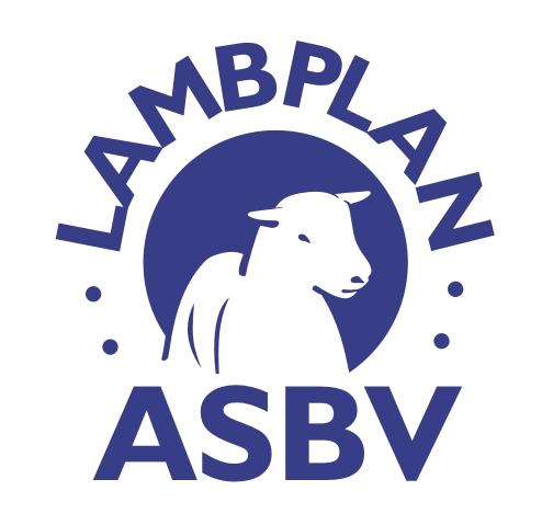 LambplanASBV300dpi